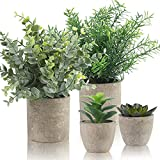 Alagirls 4 Stück Künstliche Pflanzen, Mini Kunstpflanzen Eukalyptus Rosmarin Sukkulenten mit Topf...
