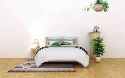 Grünpflanzen nachts nicht im Schlafzimmer