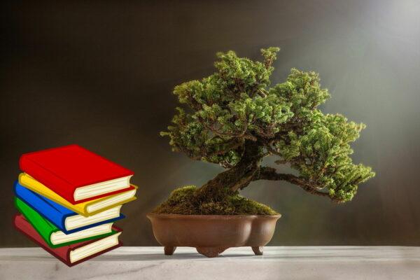 Bonsai Buch Empfehlungen